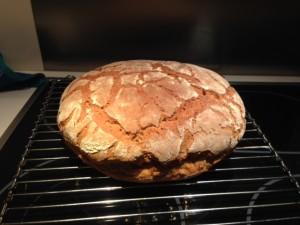 Glutenfreies veganes Brot selbst machen